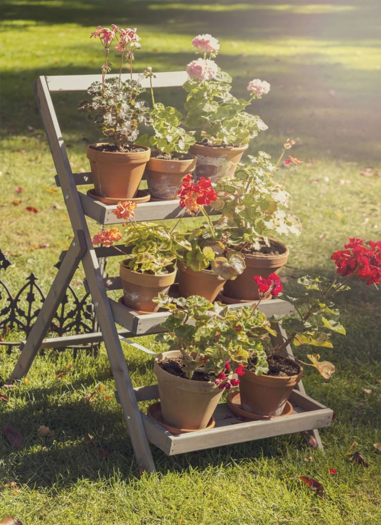 7 Outdoor Plant Stands That Will Transform Your Outdoor Space Trendspot Inc