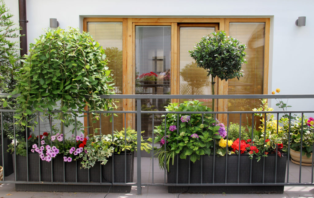 Balcony Garden Design