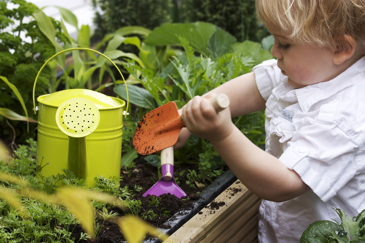 Blog   Summer Gardening With Kids Made Simple