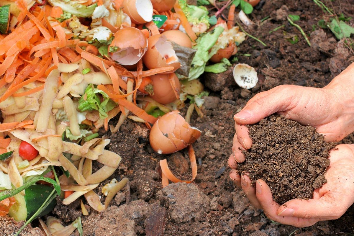 How to Start Composting in the Winter
